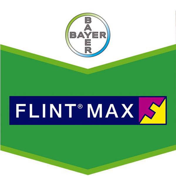 La imagen tiene un atributo ALT vacío; su nombre de archivo es products-flint-max.jpg